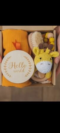 Hello World Giraffe Baby gift Hamper
